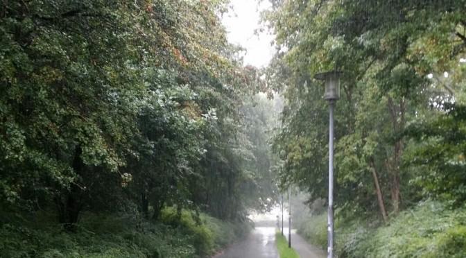 Husk regntøjet hvis det bliver regnvejr på cykelturen!